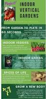 practical indoor vertical garden kits bringing your garden