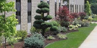amazing commercial landscape design circular driveway landscaping