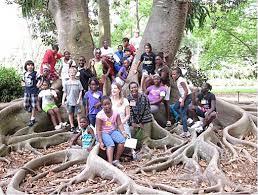 Botanical Gardens Sarasota Fl Sarasota Scholars Vist Botanical Gardens Sarasota County