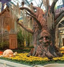 Bellagio Botanical Garden Into Autumn At Bellagio S Conservatory Botanical Gardens
