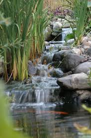 Remarkable Create An Wonderful Home Exterior With Yard Waterfall - Backyard river design