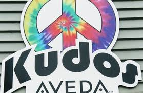 kudos salon u0026 spa oshkosh wi 54901 yp com