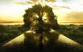 Beautiful Movies by Spiritual Beautiful Art Fountain Tree Fountain Tree 1440 X 900