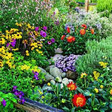 flower garden management july to december