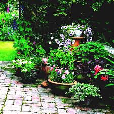 home design for dummies garden design ideas for dummies luxury flower gardening aytsaid