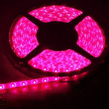 buy pink 16 4ft 5m waterproof led lights 12v 2a