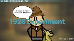 james watson contributions u0026 double helix video u0026 lesson