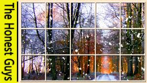 winter window scene forest living wallpaper with ambient
