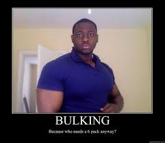 Bulking Memes - bishamon is one of the biggest trolls of this year srs thread