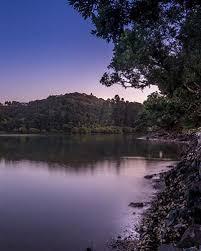 paihia top 10 holiday park bay of islands accommodation