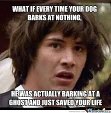 Dog Barking Meme - what if every time your dog barks at nothing by serkan meme center