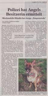 Tierheim Baden Baden Aktuelles U203a Tierheim Rastatt