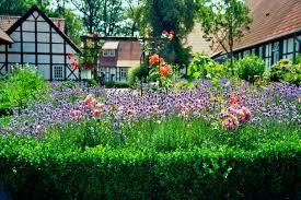 home design as a career starting a career in garden design
