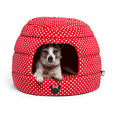 Cheap Dog Beds For Sale Amazon Com Beds Beds U0026 Furniture Pet Supplies