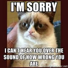 Mean Cat Memes - yes you sit wayyyy over there in your wrong ness be wrong