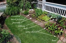 Backyard Vegetable Garden Ideas Front Yard Vegetable Garden One Month Update Front Yards