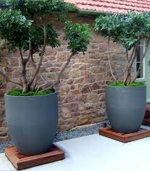 Plants And Planters by Best 20 Wooden Planters Ideas On Pinterest Wooden Planter Boxes