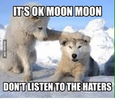 Moon Moon Memes - 25 best memes about who is moon moon who is moon moon memes