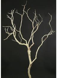 manzanita branches for sale 3ft sanded manzanita branch jamaligarden