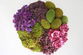 preserve your petals how to dry flowers reader u0027s digest