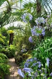 522 best conservatories images on pinterest gardens