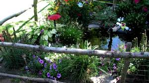 outdoor pond and turtle habitat youtube