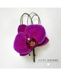 Orchid Boutonniere Corsage U0026 Boutonniere Dallas Prom Flowers Dr Delphinium
