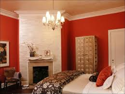 interiors magnificent colour combination for hall interior paint