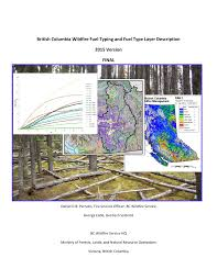 Bc Wildfire Weather by British Columbia Wildfire Fuel Typing And Fuel Type Layer Description