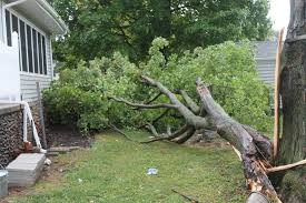 severe storms leave behind damage in central pennsylvania wnep com