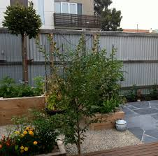 vegetable garden for small spaces vegetable gardens in small spaces small spaces garden design