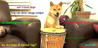 How To Pronounce Doge Meme - wow very durms doge know your meme