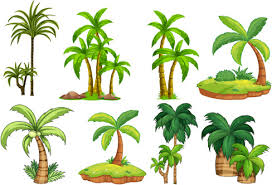 palm tree free vector 5 020 free vector for commercial