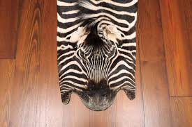 Genuine Zebra Rug Real Zebra Rugs For Sale Creative Rugs Decoration