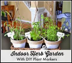 Indoor Rock Garden - mini herb garden gardening ideas
