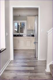 Painting Over Laminate Cabinets Uncategorized Magnificent Laminate Stain Replace Laminate