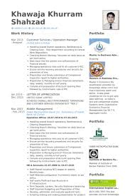 Portfolio Resume Sample by Customer Services Resume Samples Visualcv Resume Samples Database