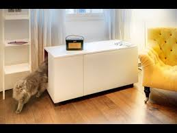 Kitty Litter Bench 20 Simple Diy Kitty Litter Boxes And Loss From Ikea Units Youtube