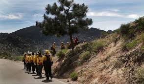 Wildfire Training by A Trial By Imaginary Fire For Women Who Want To Fight Real