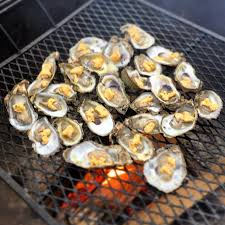 Cooking Over Fire Pit Grill - why and how to oil your grill grate