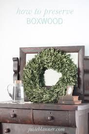 preserved boxwood wreath how to preserve boxwood