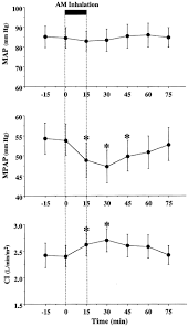 Map Mean Arterial Pressure Effects Of Adrenomedullin Inhalation On Hemodynamics And Exercise