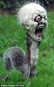 Horse Head Meme - best horse head meme squirrel joins in the halloween fun with