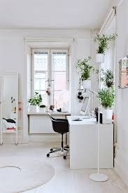 Indoor Plant For Office Desk Our Top 7 Unkillable Indoor Plants The Ultimate Desk Plants