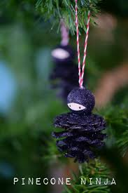 twig and toadstool pinecone ninjas