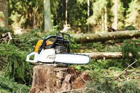 chainsaw chain sharpener reviews the best way to keep your