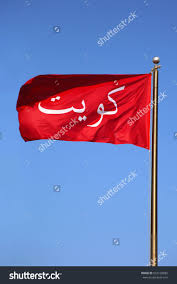 best 25 national flag information ideas on pinterest images of