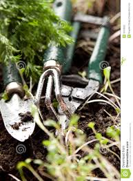 group of gardening tools stock photography image 19139052