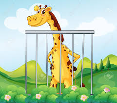 illustration of a giraffe inside the cage royalty free cliparts