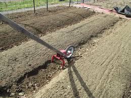 the deliberate agrarian step by stepraised garden beds